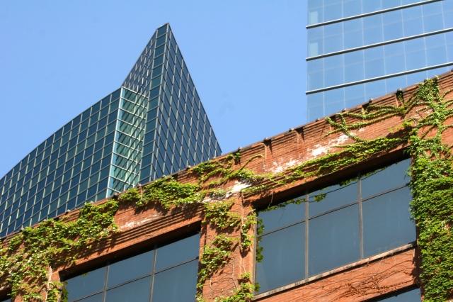 Devine architectural contrasts