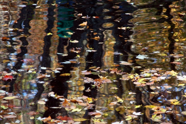 Artistic reflections by Wolf Creek Falls #2, Banning SP