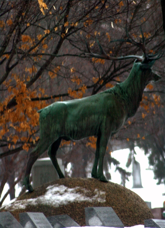 Elk standing over the graveyard, Lakewood Cemetery