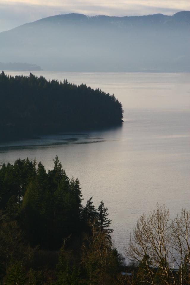 Pacific Coast scenic, near Bellingham, WA 007