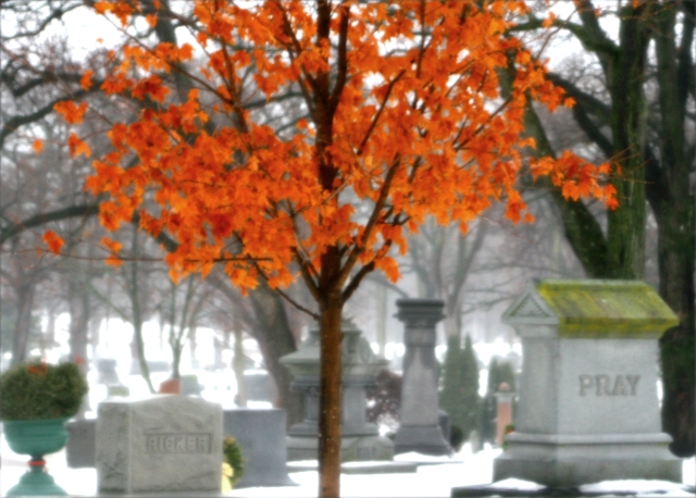 Pray for color on monochrome day, Lakewood Cemetery