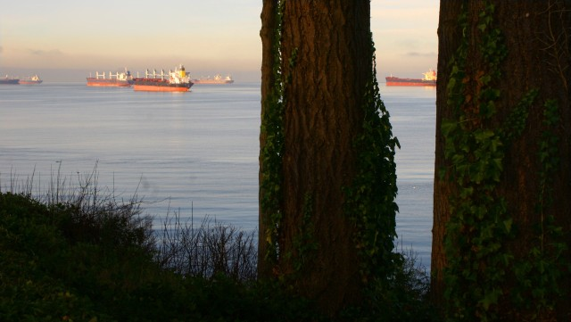 Cargo ships off Stanley Island 003