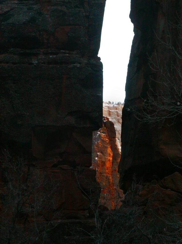 Color comes through, Zion Natl Park