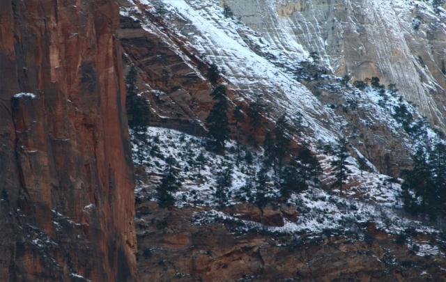 Snow dappled cliffs, Zion Canyon NPk