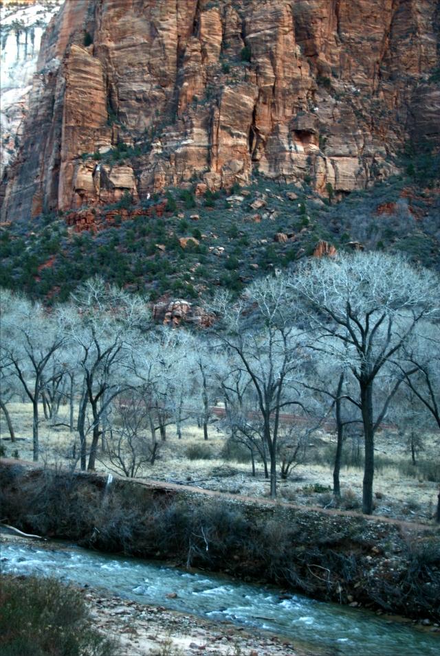Virgin River scenic near Zion Lodge