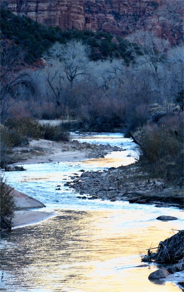 Virgin River Scenic Zion Natl Park 003