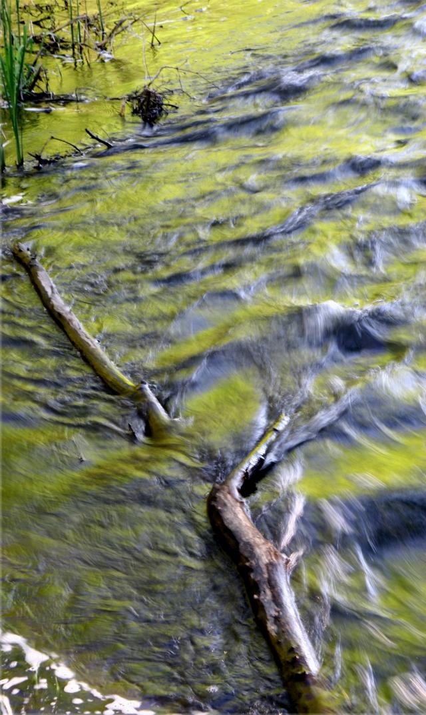 Rushing colors, Battle Creek Park