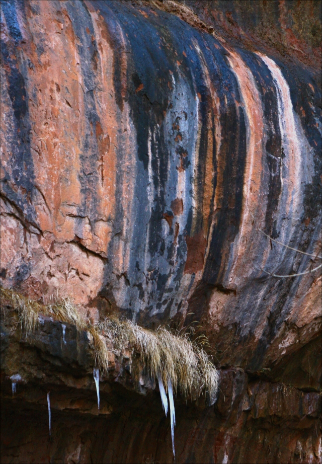Stained rock ledge with icicles, Zion NPK