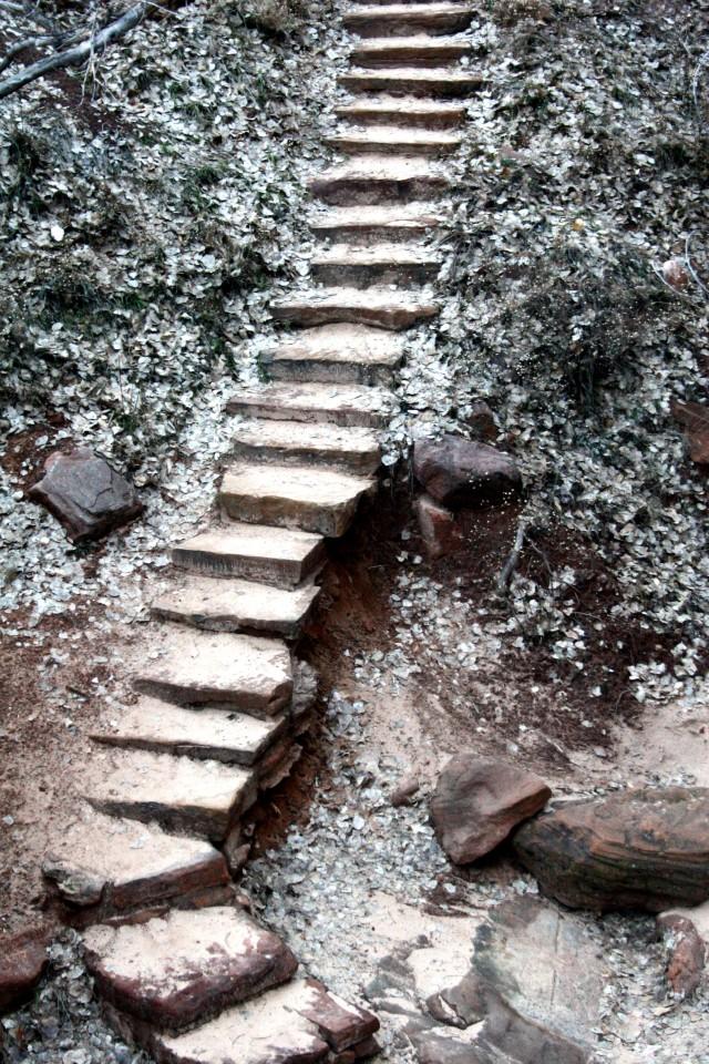 Steps in Zion Natl Park, Big Bend area