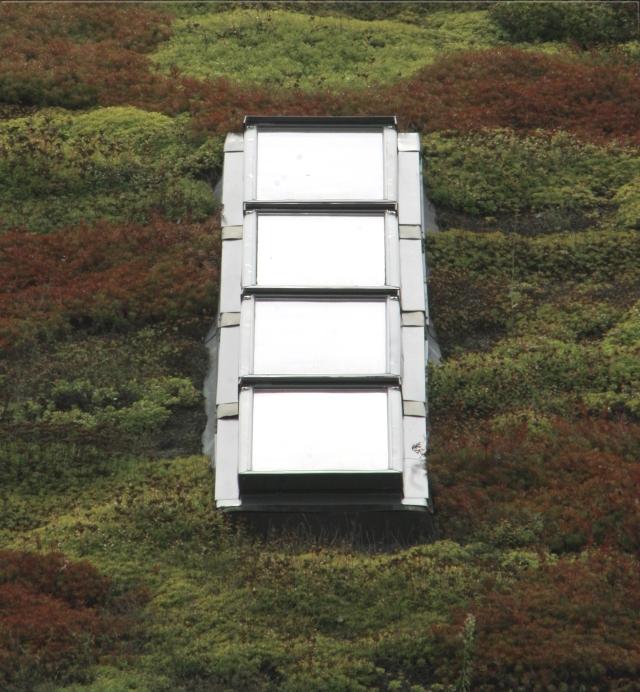 Green roof, shiny skylight, Lebanon Hills Regional Park