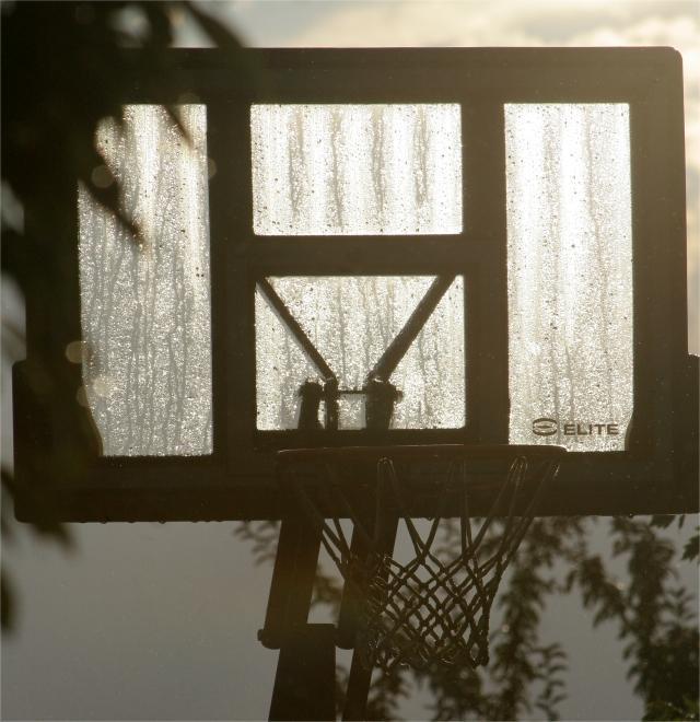 Sweaty backboard, my front yard