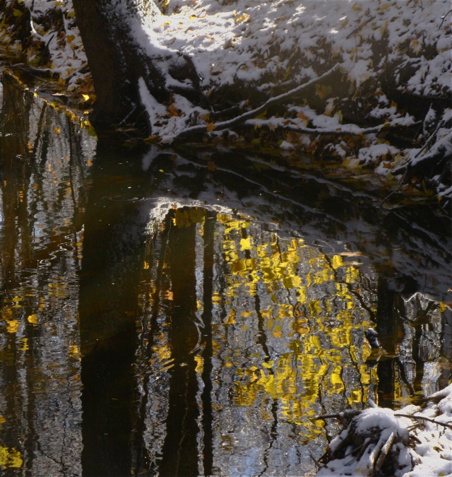 Fall reflection on wintery landscape 002