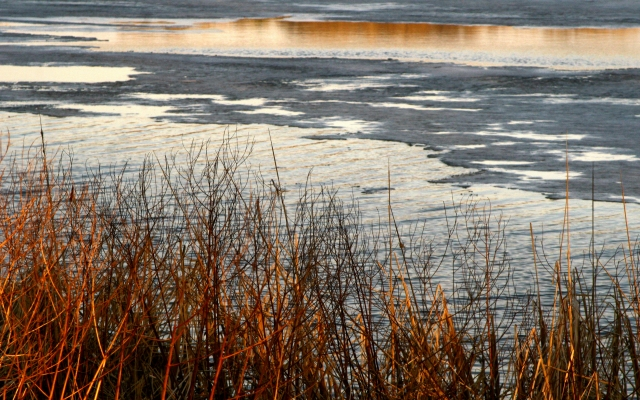 The ice melteth and evening hues, Fish Lake Park