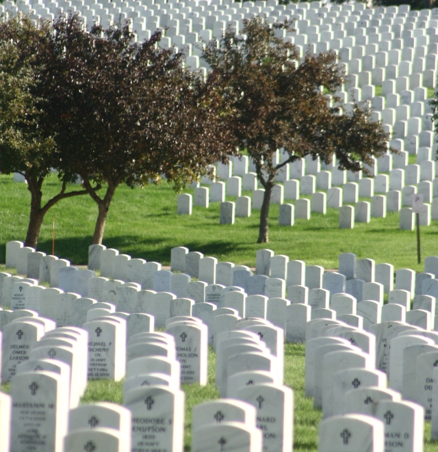 Rows of Service 002, Fort Snelling National Cemetery