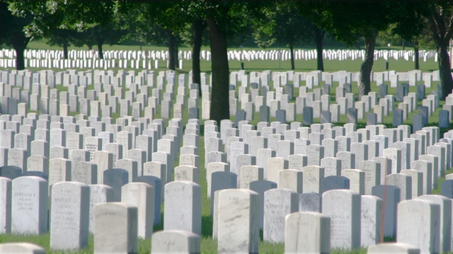 Rows of Service 006, Fort Snelling National Cemetery