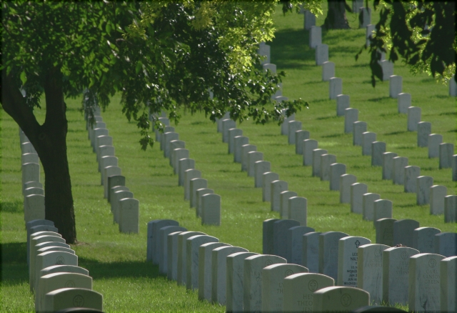 Rows of Service 009, Fort Snelling National Cemetery