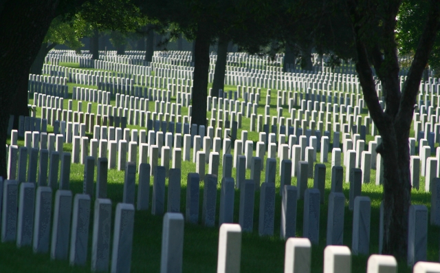 Rows of Service 010, Fort Snelling National Cemetery