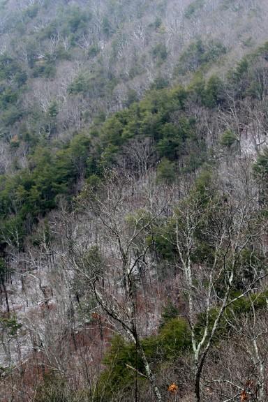 Fort Mountain Hillside 001, GA