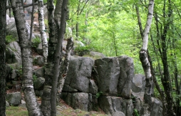 Rock formation near top of Rib Mountain