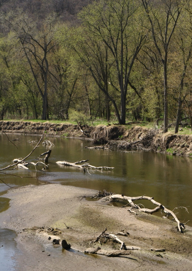 Spring along the Cannon River