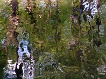 Watereous Reflection Abstractus