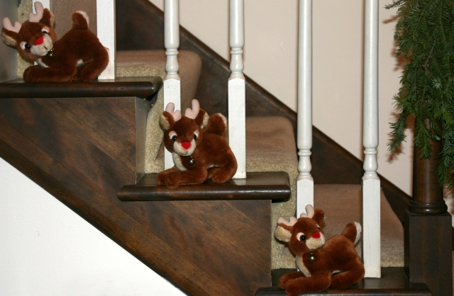 Reindeer on the Bacon stairs