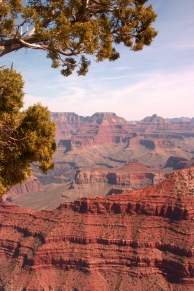 Grand Canyon South Rim - Rimshots 013 -3.16.16