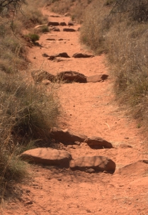 The rock segments on Fay Canyon trail, Fay Canyon Sedona, AZ 3.18.16
