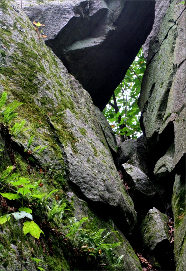 boulder-on-the-shoulder-of-a-ferner-formation-rib-mtn