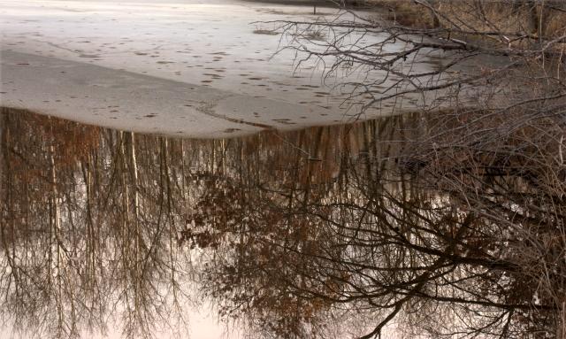 parial-melt-partial-reflection-three-pond-park