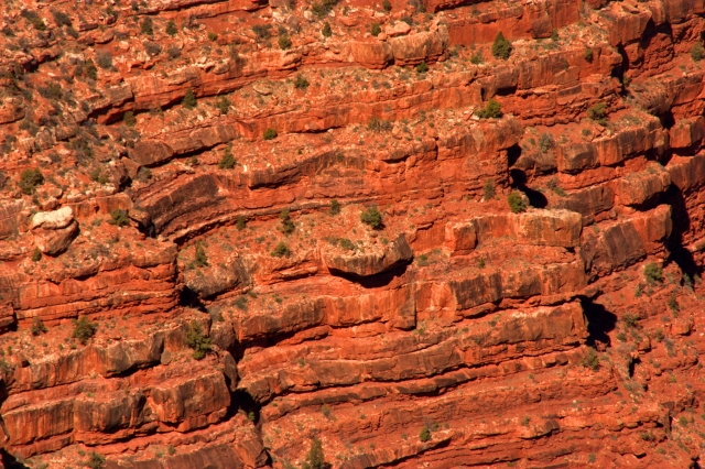 ridges-on-the-rim