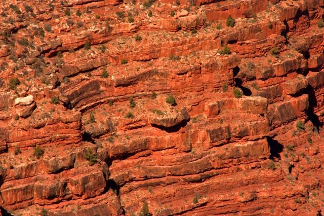 ridges-on-the-rim