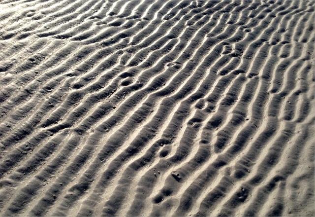 sand-ripples-sarasota-2-fl