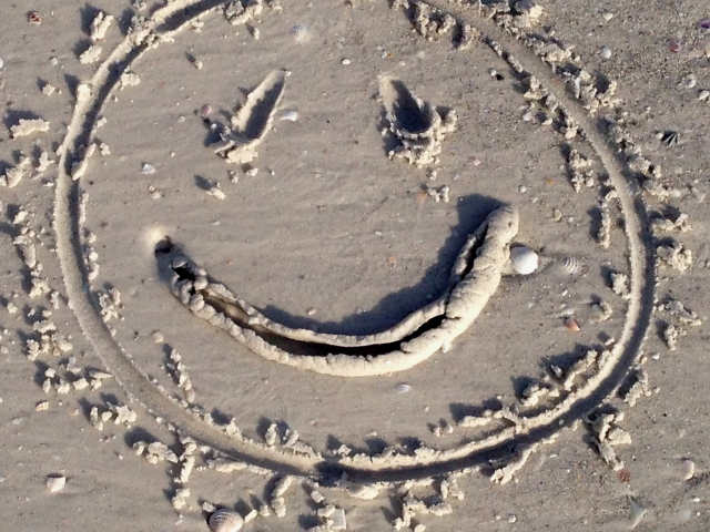 smiley-face-with-a-shell-creature-smile