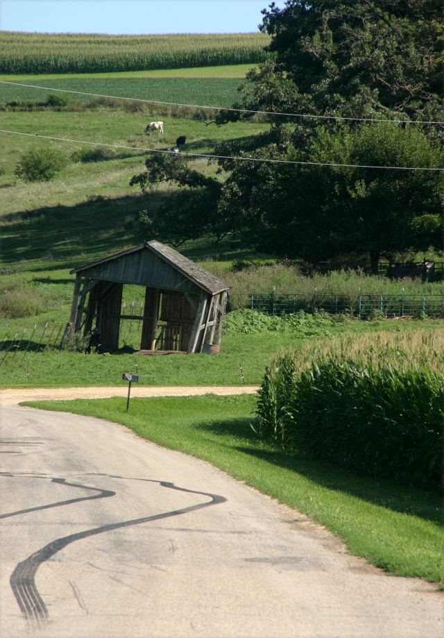 a-lean-to-shed-green-county-wi