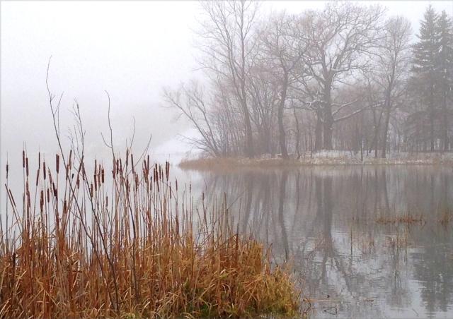 moody-environment-on-mooney-lake-02