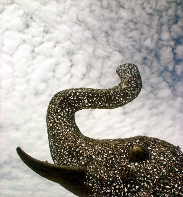 ornate-elephant-reaching-to-the-spackled-sky-amana-ia