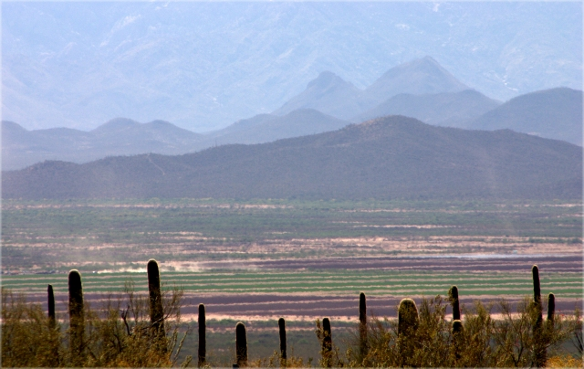 view-of-desert-valley-from-desert-museum