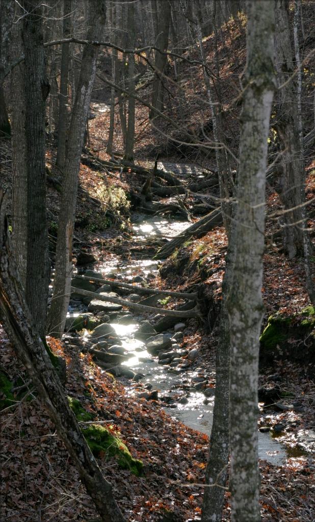 river-and-ravine-2-wolsfeld-sna